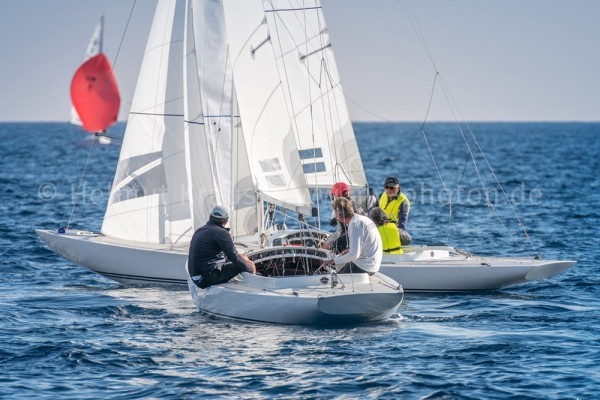 Dragon Gold Cup 3-48