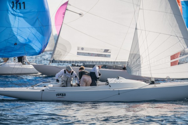 Dragon Gold Cup 3-47