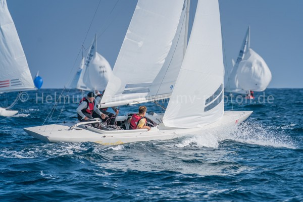 Dragon Gold Cup 5-48